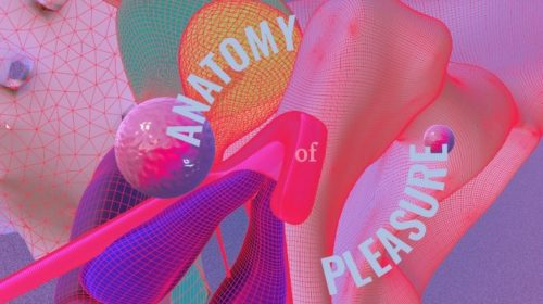 Sex Tech Startups: Anatomy of Pleasure